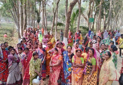কমলগঞ্জে দলই চা বাগানে শ্রমিকদের আবার  কর্মবিরতি