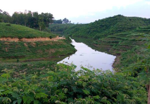 কমলগঞ্জের নান্দনিক প্রাকৃতিক সৌন্দর্য পদ্মছড়া লেক পর্যটকদের হাতছানি দিয়ে ডাকছে